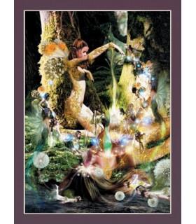 Poster Criação (30 x 40,5 cm)