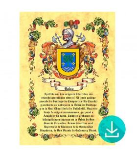 Pergaminho Virtual escudo de armas 1 apelido